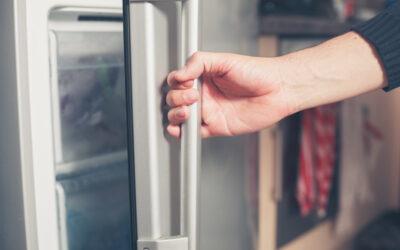 How Long do Frozen Gourmet Meals Last?